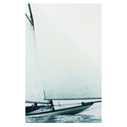 "Sailing boat plate ""Alpha"""