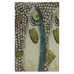 """Plat """"sardines"""""""